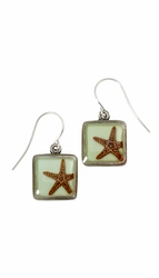 Starfish on Aqua SM Square Earrings