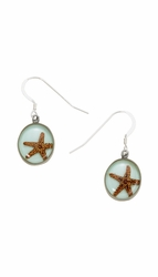 Starfish Small Round Earrings