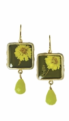 Yellow Achillea Sml Sq. earrings w/Drop