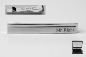Contemporary Stainless Steel Tie Clip