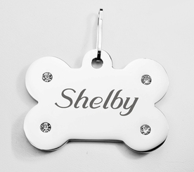 Large Silver Stone Bone Pet Tag
