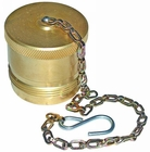"3/4"" NPT Coupler Steel Dust Plug w/Chain, Buyers QDDP122"
