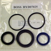 Lift Cylinder Seal Kit, RT3, Boss HYD07025