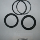 Seal Kit for HYD08830, HYD09731, Boss HYD08842