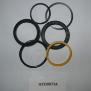 Seal Kit for HYD09733, Smart Lock Cyl., 06+, Boss P/N HYD09734