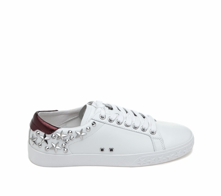 ASH Dazed White Bordeaux Sneaker