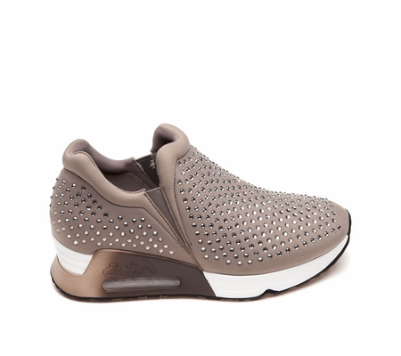 ASH Lifting Taupe Sneaker