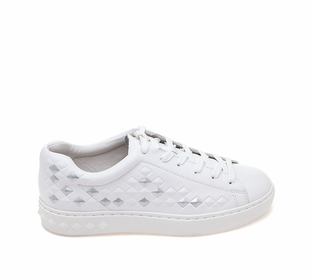 ASH Panic White Leather Sneaker