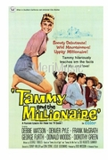 Tammy and the Millionaire 1967 (DVD)