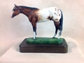 "Full Body Medium Size ""Appaloosa"" trophy"