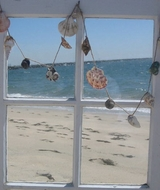 Seashell Garland multi shell
