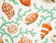 Seashell Shower Curtain Coral Shells