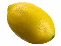 1 Dozen - 3 inch Weighted Artificial Lemon