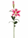 "1 Dozen - 36"" Real Touch Artificial Casablanca Lily Flower Sprays"