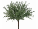 "8"" Rosemary Artificial Bush Stem - Set of 12"