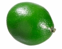 "1 Dozen Artificial Limes Weighted - 2"" Length"