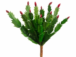 "10"" Artificial Christmas Cactus With Red Buds"