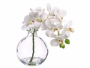 "10"" Artificial Phalaenopsis Orchid Arrangement in Glass Vase - Set of 8"