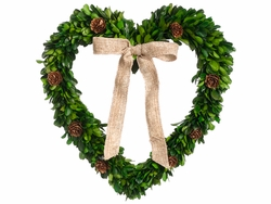 "12"" Preserved Boxwood and Artificial Pine Cone Heart Shape Wreath - Set of 3"