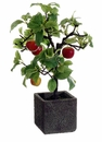 "14"" Artificial Apple Tree in Cement Pot - Set of 3"