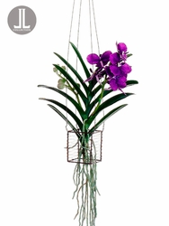"""15"""" Silk Vanda Orchid Artificial Hanging Plant in Wire Basket"""