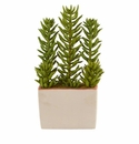17� Succulent Artificial Plant With Decorative Planter -