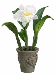 "19"" Artificial Cattleya Orchid Plant in Cement Pot - Set of 4"