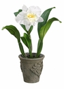 """19"""" Artificial Cattleya Orchid Plant in Cement Pot - Set of 4"""