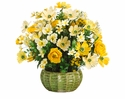 """19""""  Silk Cosmos and Ranunculus Flowers with Artificial Berries in Pot"""