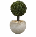 2� Boxwood Topiary Artificial Tree in Sand Colored Bowl (Indoor/Outdoor) -