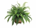 2' Silk Fern Plant in Metal Planter