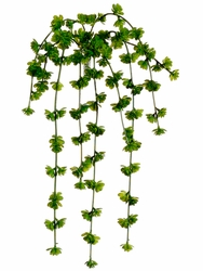 "20"" Sedum Vine with 9 vines - Set of 12"