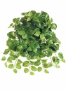 """21"""" Puff Pothos Hanging Silk Artificial Plant - Non Potted-Set of 12"""