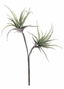 "21"" Medium Artificial Tillandsia Spray"