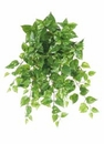 "22.5"" Artificial Medium Pothos Hanging Silk Ivy Bush - Set of 12"