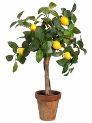 "22"" Young Artificial Lemon Topiary in Paper Mache - Set of 4"