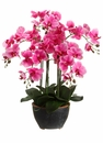 "24"" Artificial Phalaenopsis Orchid Plant Arrangement in Ceramic Pot - Set of 2"