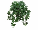 "24"" Artificial Silk English Ivy Hanging Bush - Set of 12"