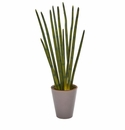 24� Bamboo Shoot Artificial Plant in Decorative Planter -