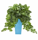 25�� Nephtytis Artificial Plant in Turquoise Planter -