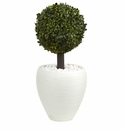 26� Boxwood Topiary Artificial Tree in White Oval Planter (Indoor/Outdoor) -