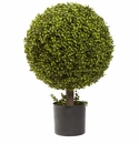 27� Boxwood Ball Topiary
