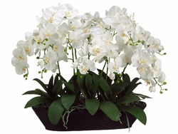 "27"" White Phalaenopsis Orchid Artificial Flower Arrangement in Oval Container"