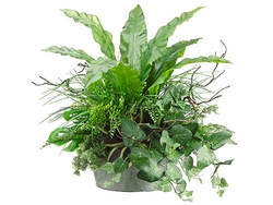 "29"" Apista Leaf, Grass, Fern, Bromeliad Ledge Plant in Metal Container Green"