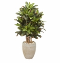 3.5� Croton Artificial Plant in Sand Colored Planter -