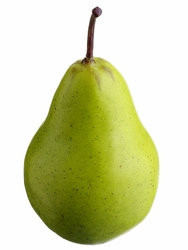"3.75"" Artificial Weighted Pear - Set of 12"