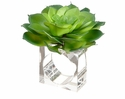 "3"" Artificial Echeveria Cactus Table Napkin Ring - Set of 6"