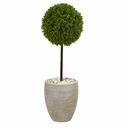 3� Boxwood Ball Topiary Artificial Tree in Oval Planter UV Resistant (Indoor/Outdoor) -