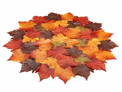 "32"" Artificial Maple Leaf Fall Place Mat Table Settings - Set of 12"