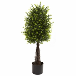 35'' Ixora Topiary UV Resistant (Indoor/Outdoor)